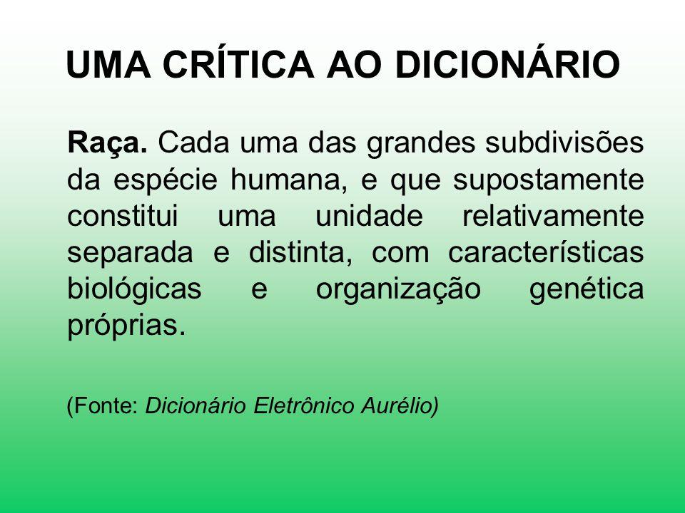 UMA CRÍTICA AO DICIONÁRIO Raça.