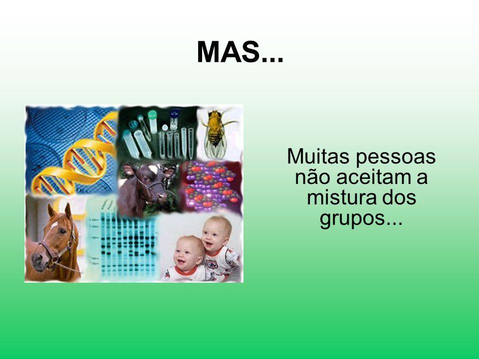 MAS... Muitas pessoas não aceitam a mistura dos grupos...
