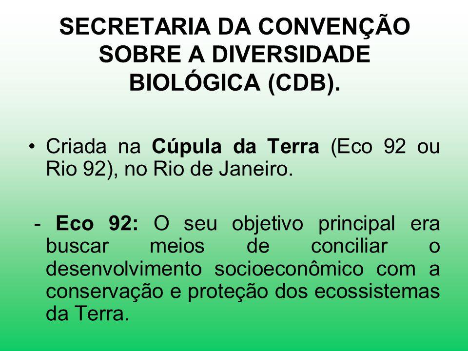 SECRETARIA DA CONVENÇÃO SOBRE A DIVERSIDADE BIOLÓGICA (CDB). Criada na Cúpula da Terra (Eco 92 ou Rio 92), no Rio de Janeiro. - Eco 92: O seu objetivo