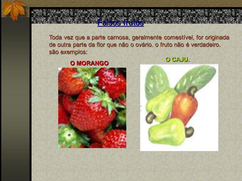 Classificação dos Frutos 1.Simples: derivados de um único ovário, súpero ou ínfero, de uma flor.
