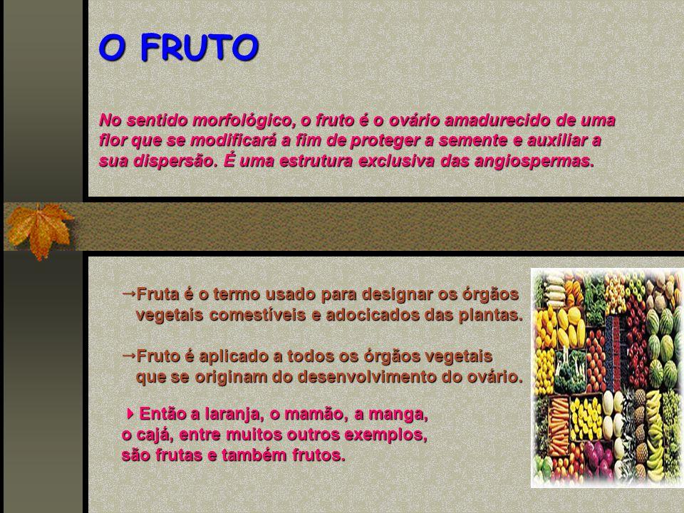 Fruta é o termo usado para designar os órgãos vegetais comestíveis e adocicados das plantas.
