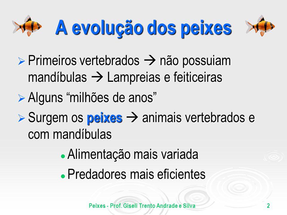 Peixes - Prof. Giseli Trento Andrade e Silva2 A evolução dos peixes Primeiros vertebrados não possuiam mandíbulas Lampreias e feiticeiras Primeiros ve