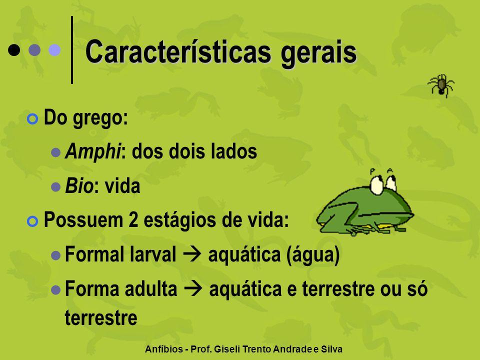 Anfíbios - Prof. Giseli Trento Andrade e Silva Exemplares atuais Sapos Rãs Pererecas Salamandras