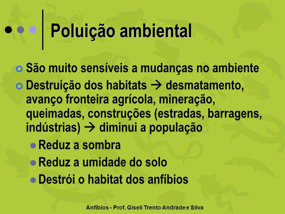 Poluição ambiental São muito sensíveis a mudanças no ambiente Destruição dos habitats desmatamento, avanço fronteira agrícola, mineração, queimadas, c