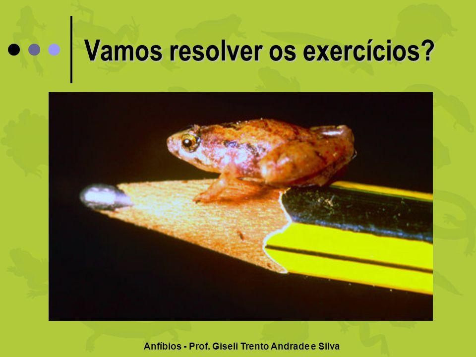 Anfíbios - Prof. Giseli Trento Andrade e Silva Vamos resolver os exercícios?