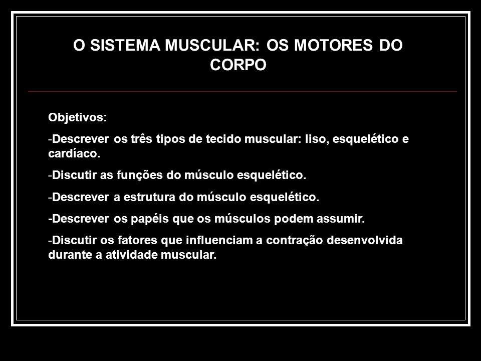 Educandário Jesus Menino Fisiologia do Exercício SISTEMA MUSCULAR E EXERCÍCIO Prof. Kleison Leopoldino