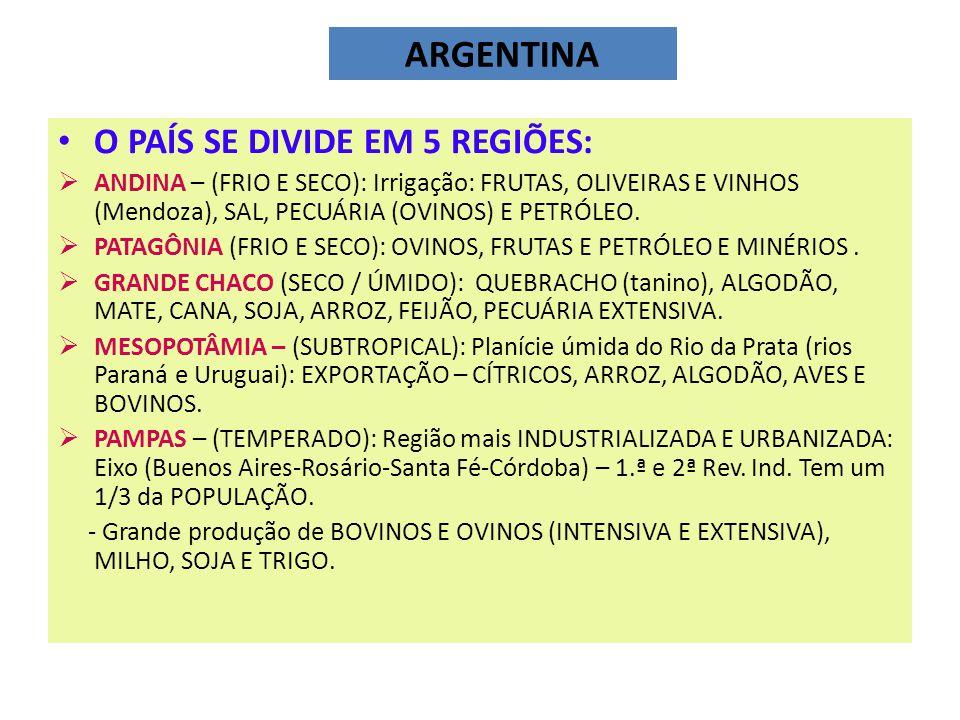 ARGENTINA O PAÍS SE DIVIDE EM 5 REGIÕES: ANDINA – (FRIO E SECO): Irrigação: FRUTAS, OLIVEIRAS E VINHOS (Mendoza), SAL, PECUÁRIA (OVINOS) E PETRÓLEO.
