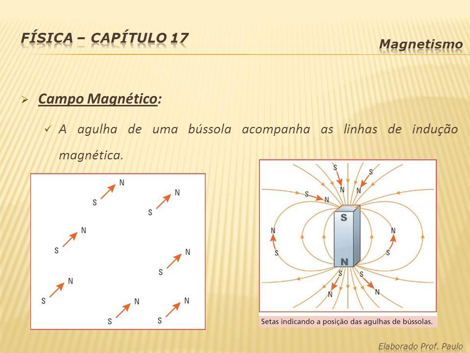 A agulha de uma bússola acompanha as linhas de indução magnética.