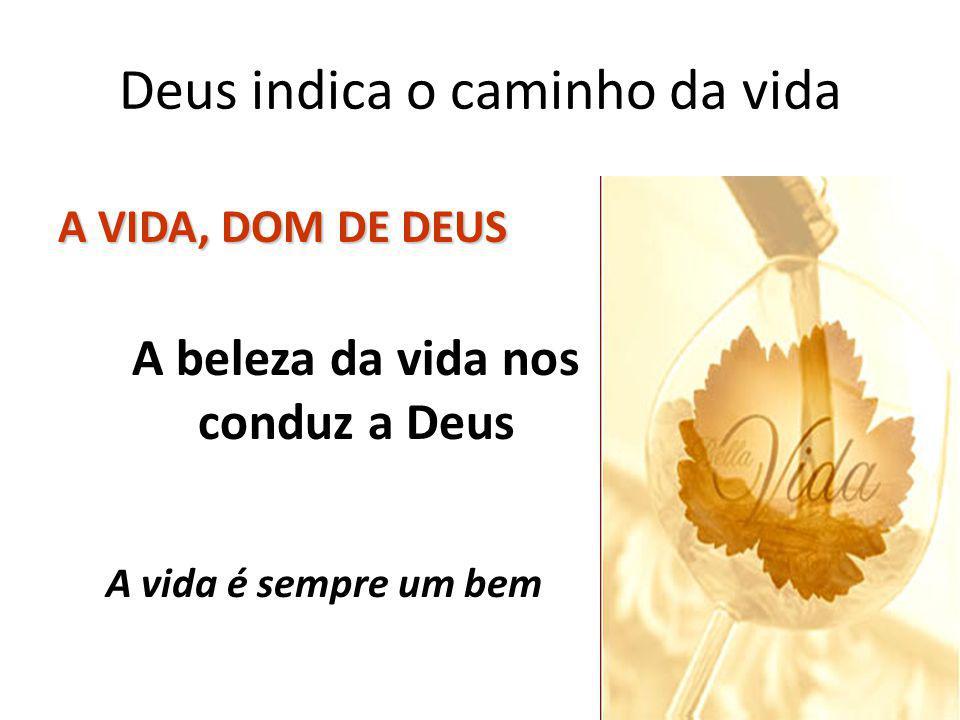 Deus indica o caminho da vida A VIDA, DOM DE DEUS A beleza da vida nos conduz a Deus A vida é sempre um bem