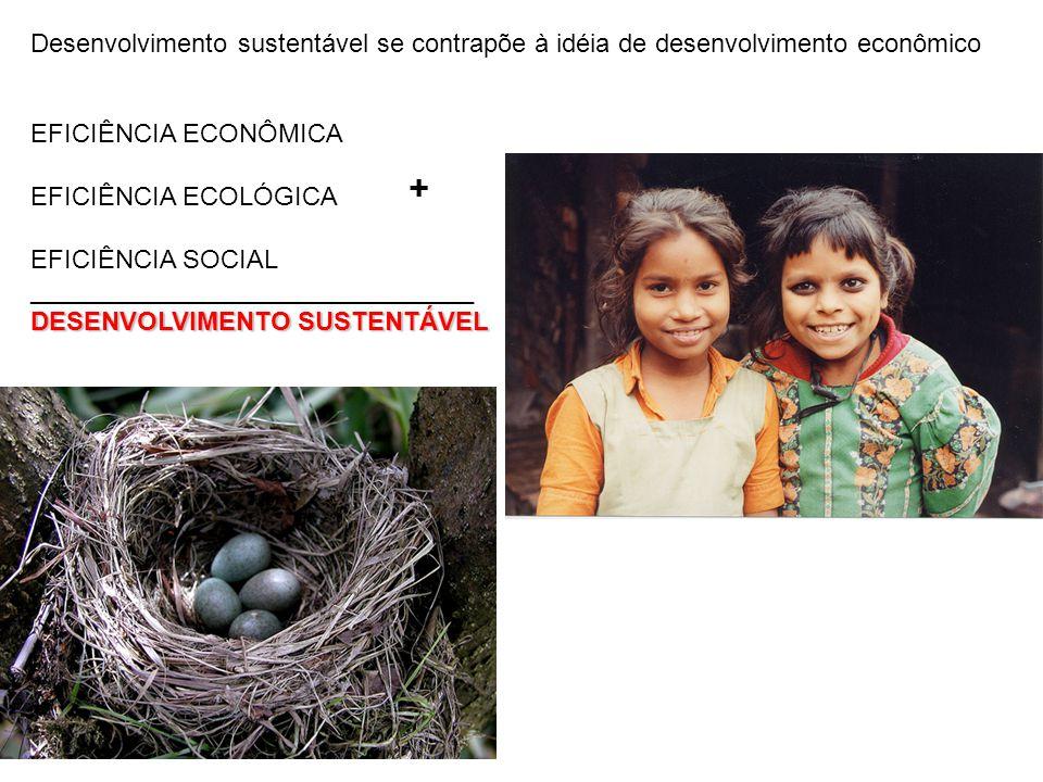 EFICIÊNCIA ECONÔMICA EFICIÊNCIA ECOLÓGICA EFICIÊNCIA SOCIAL _______________________________ DESENVOLVIMENTO SUSTENTÁVEL + Desenvolvimento sustentável
