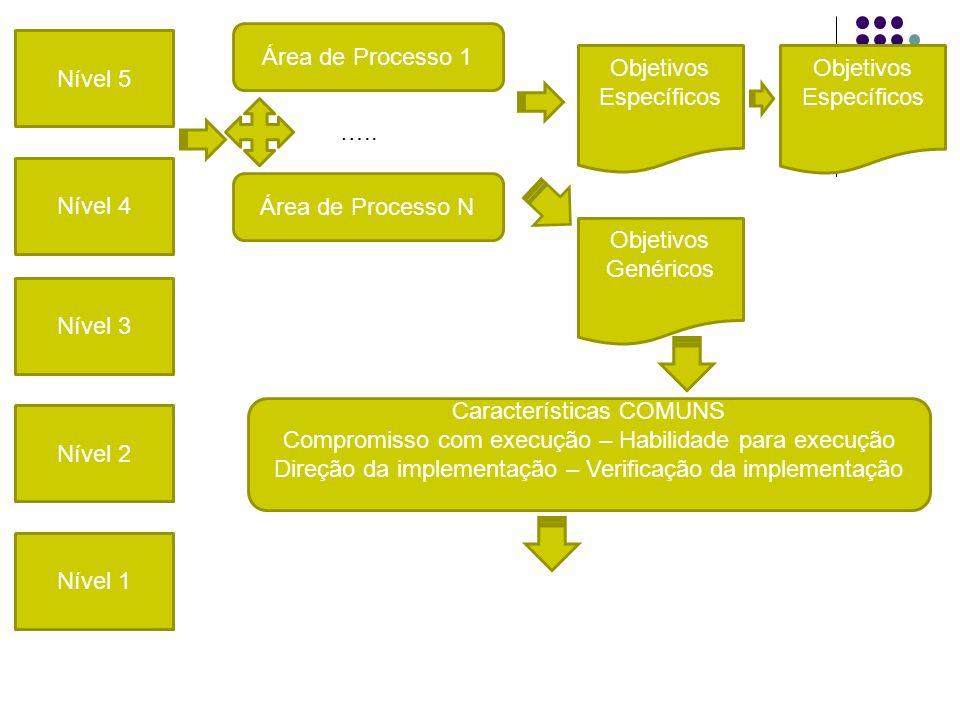 Nível 5 Nível 4 Nível 3 e Nível 2 Nível 1 Área de Processo 1 Área de Processo N Objetivos Específicos Objetivos Genéricos Objetivos Específicos …..