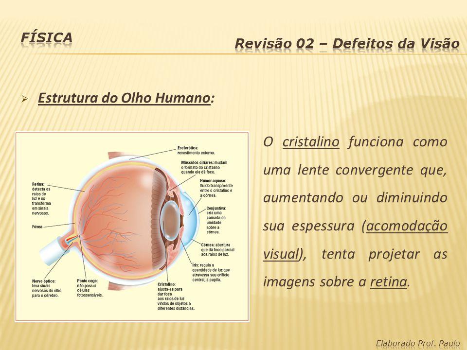 Estrutura do Olho Humano: O cristalino funciona como uma lente convergente que, aumentando ou diminuindo sua espessura (acomodação visual), tenta proj