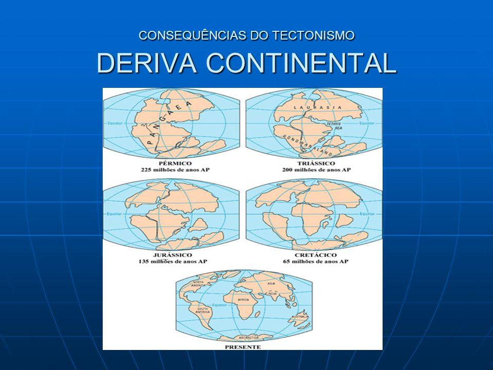 CONSEQUÊNCIAS DO TECTONISMO DERIVA CONTINENTAL