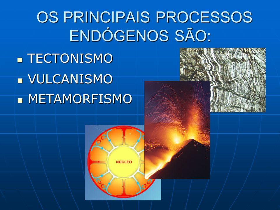 TECTONISMO TECTONISMO OS PRINCIPAIS PROCESSOS ENDÓGENOS SÃO: OS PRINCIPAIS PROCESSOS ENDÓGENOS SÃO: VULCANISMO VULCANISMO METAMORFISMO METAMORFISMO