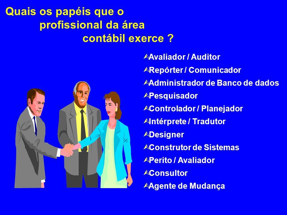 Contador Na Empresa Independente (Autônomo) No Ensino Órgão Público Planejador Tributário Contador Geral Analista Financeiro Cargos Administrativos Au