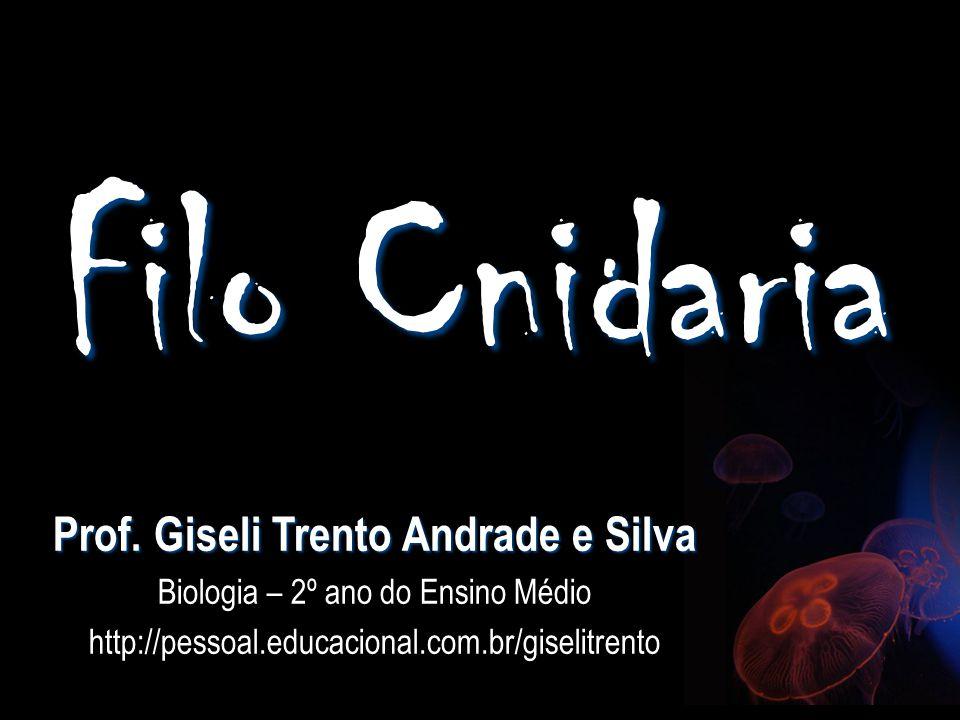 Filo Cnidaria Prof. Giseli Trento Andrade e Silva Biologia – 2º ano do Ensino Médio http://pessoal.educacional.com.br/giselitrento