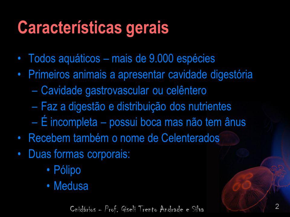 Cnidários - Prof. Giseli Trento Andrade e Silva 2 Características gerais Todos aquáticos – mais de 9.000 espécies Primeiros animais a apresentar cavid