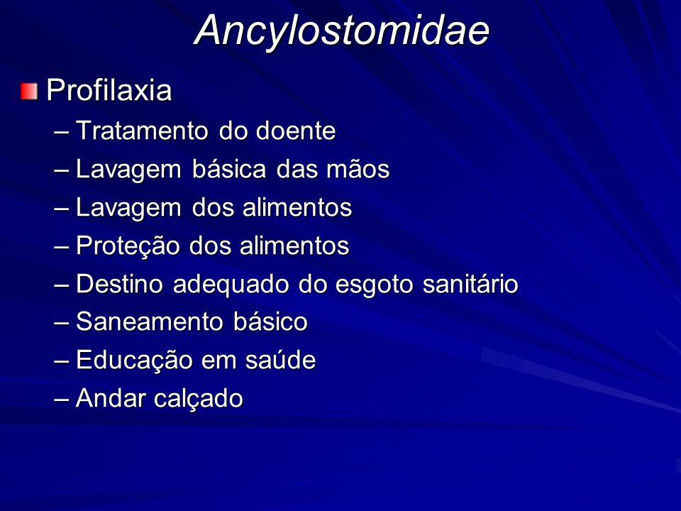 AncylostomidaeProfilaxia –Tratamento do doente –Lavagem básica das mãos –Lavagem dos alimentos –Proteção dos alimentos –Destino adequado do esgoto san