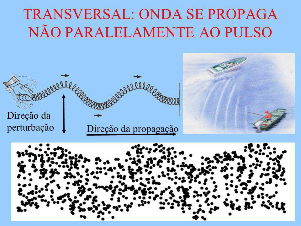 TRANSVERSAL: ONDA SE PROPAGA NÃO PARALELAMENTE AO PULSO Direção da propagação Direção da perturbação