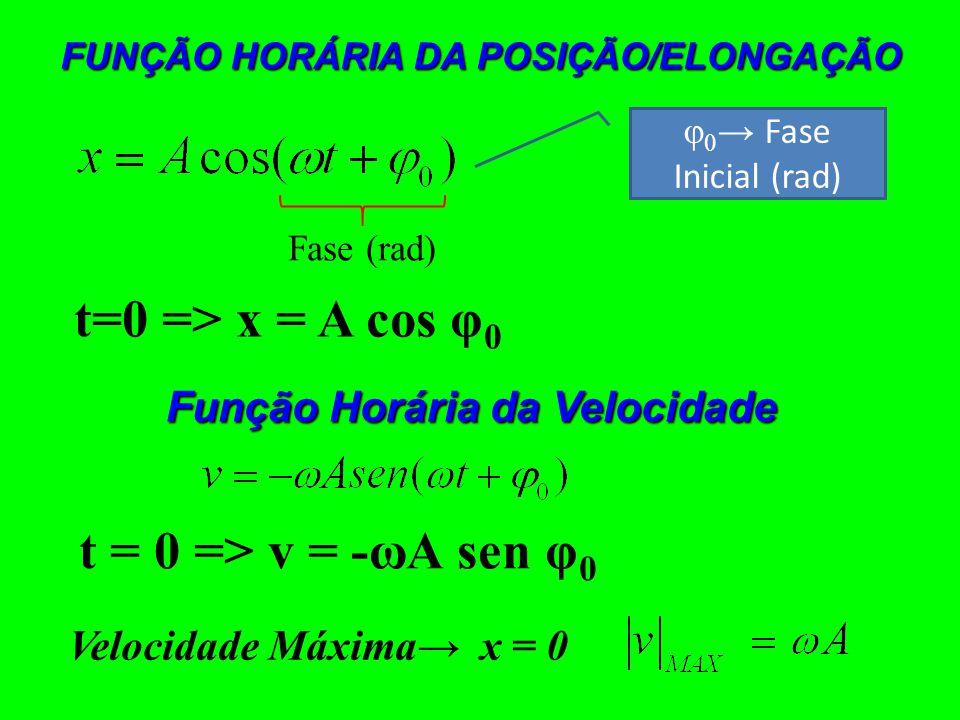 FUNÇÃO HORÁRIA DA POSIÇÃO/ELONGAÇÃO φ 0 Fase Inicial (rad) Fase (rad) t=0 => x = A cos φ 0 Função Horária da Velocidade t = 0 => v = -ωA sen φ 0 Velocidade Máxima x = 0