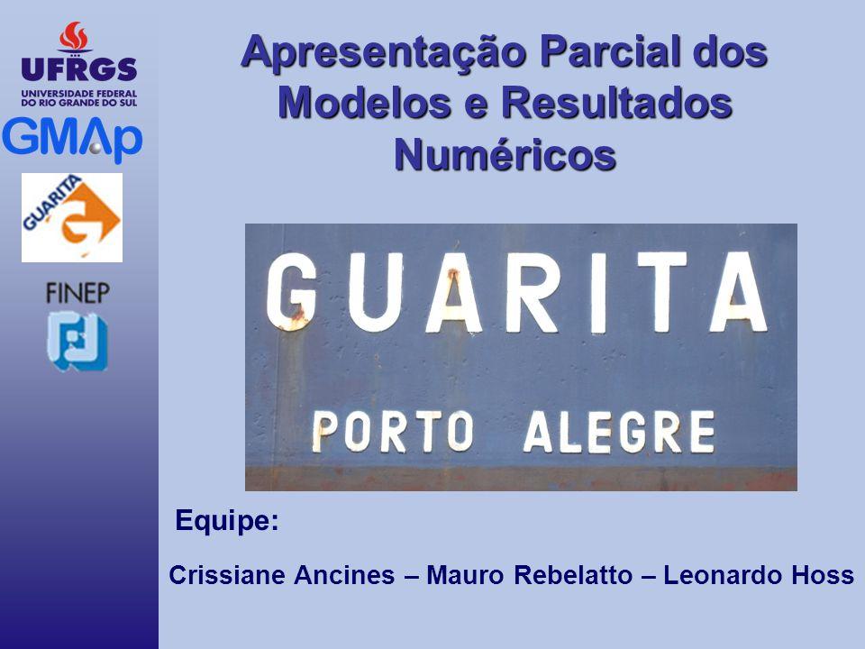 Apresentação Parcial dos Modelos e Resultados Numéricos Equipe: Crissiane Ancines – Mauro Rebelatto – Leonardo Hoss