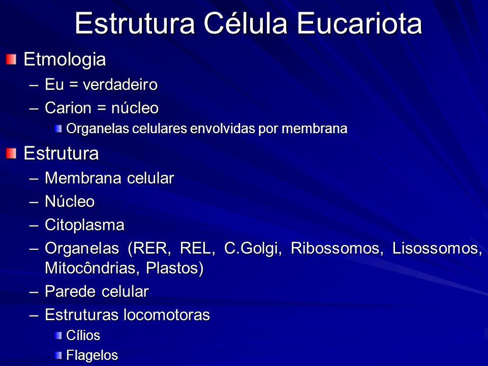 Estrutura Célula Procariota Etmologia –Pro = falso –Carion = núcleo Organelas celulares não envolvidas por membrana Estrutura –Membrana celular –Citoplasma –Parede celular –Estruturas de resistência (esporos) –Estruturas locomotoras CíliosFlagelos –Pili ( = fímbrias) FixaçãoReprodução