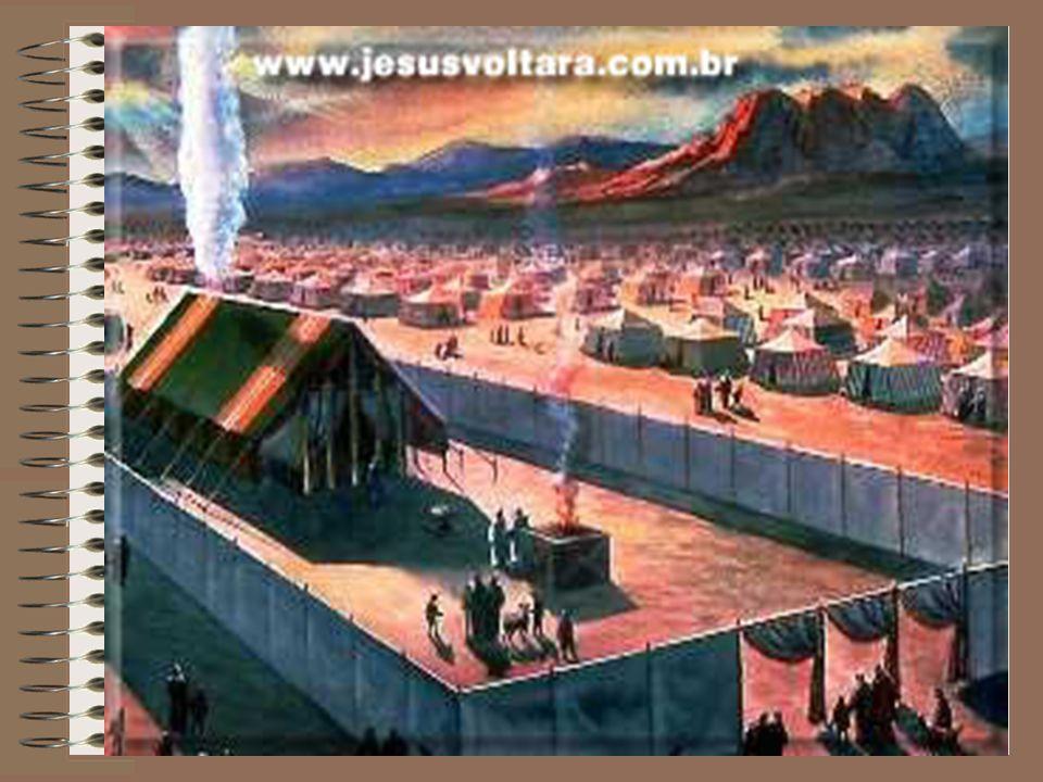 Os sacrifícios eram oferecidos em louvor, adoração e agradecimento e também para perdão e comunhão.