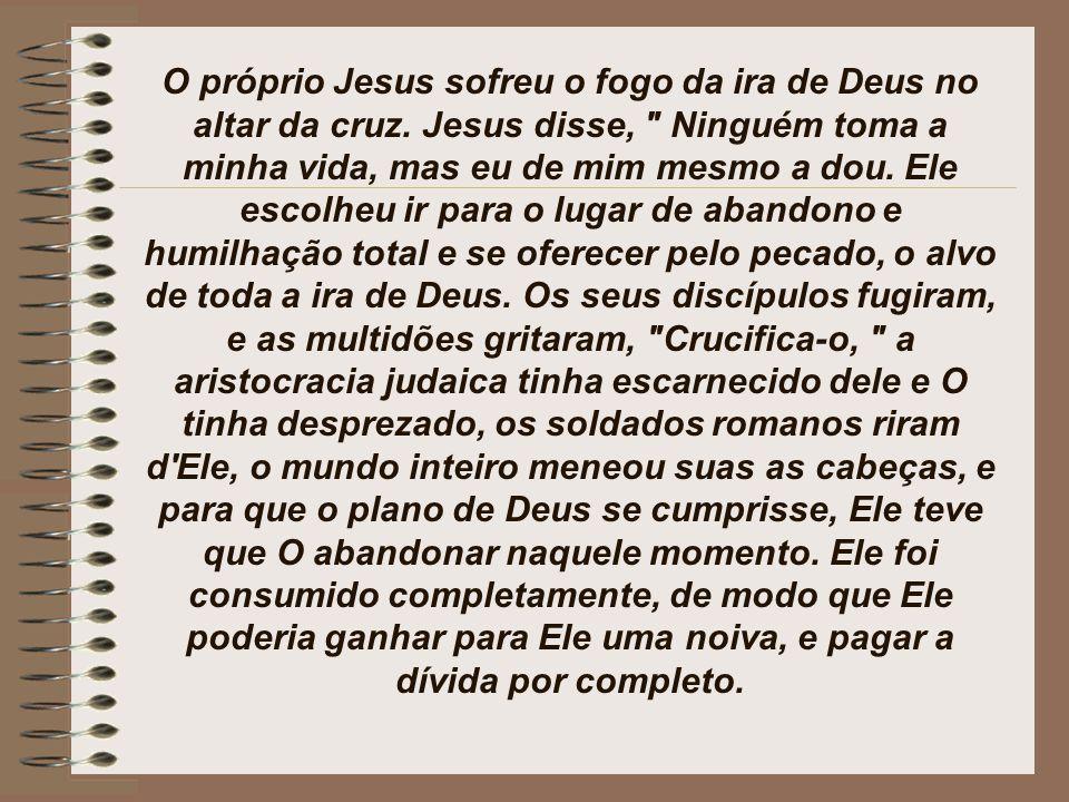 Jo 1:29
