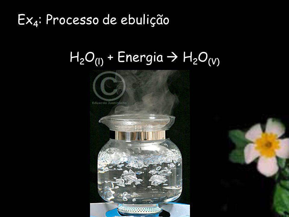 Ex 4 : Processo de ebulição H 2 O (l) + Energia H 2 O (V)