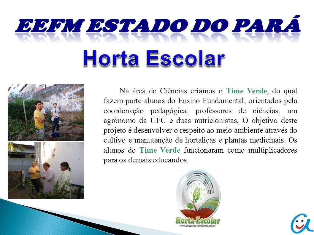 Na área de Ciências criamos o Time Verde, do qual fazem parte alunos do Ensino Fundamental, orientados pela coordenação pedagógica, professores de ciê