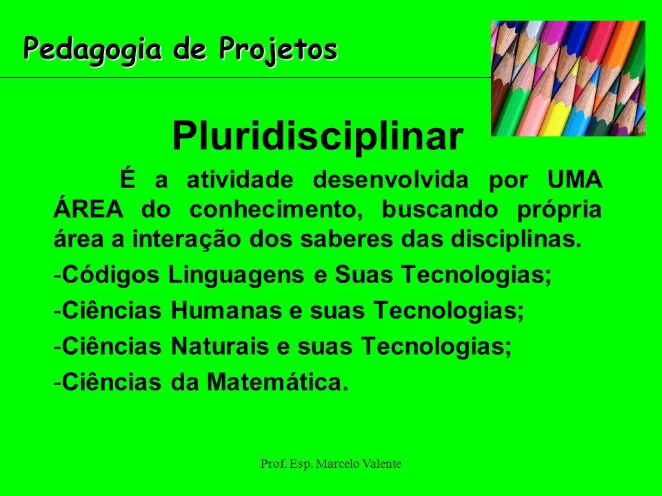 Prof. Esp. Marcelo Valente Pluridisciplinar É a atividade desenvolvida por UMA ÁREA do conhecimento, buscando própria área a interação dos saberes das