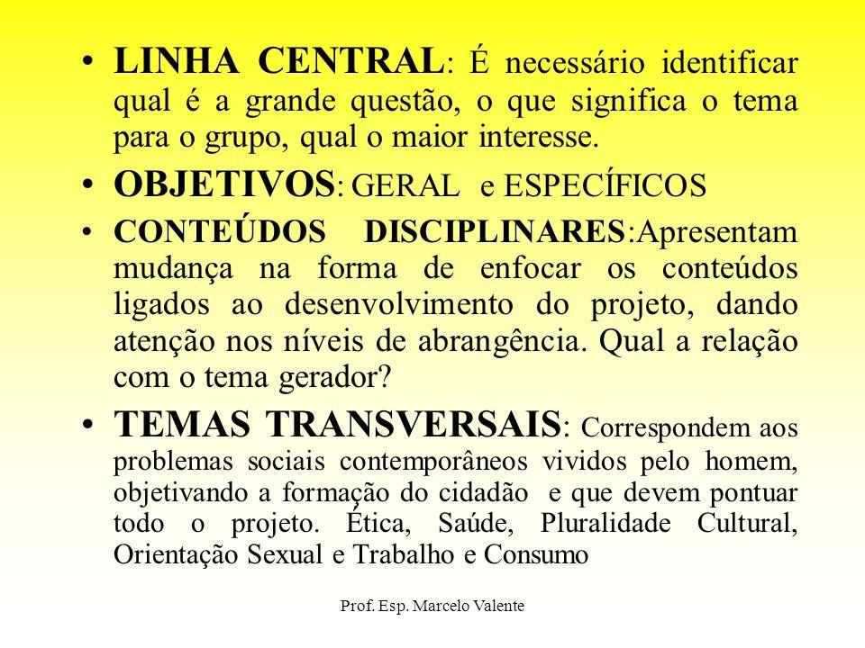 Prof. Esp. Marcelo Valente LINHA CENTRAL : É necessário identificar qual é a grande questão, o que significa o tema para o grupo, qual o maior interes