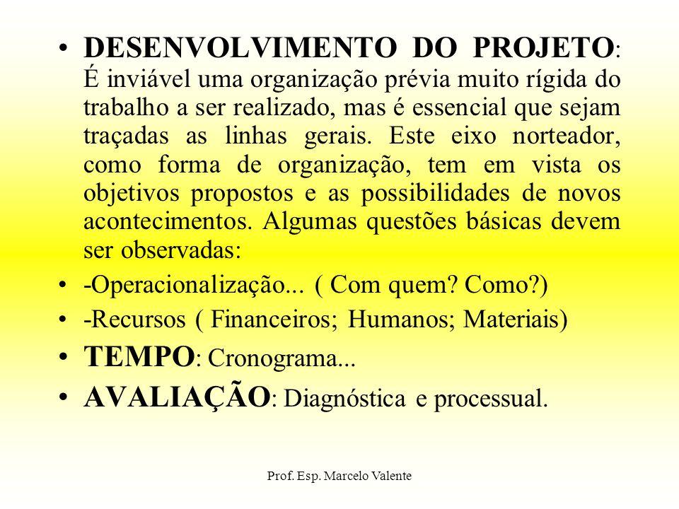 Prof. Esp. Marcelo Valente DESENVOLVIMENTO DO PROJETO : É inviável uma organização prévia muito rígida do trabalho a ser realizado, mas é essencial qu