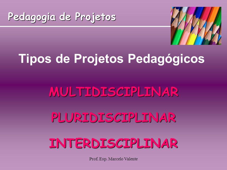 Prof. Esp. Marcelo Valente Tipos de Projetos Pedagógicos MULTIDISCIPLINARPLURIDISCIPLINARINTERDISCIPLINAR Pedagogia de Projetos