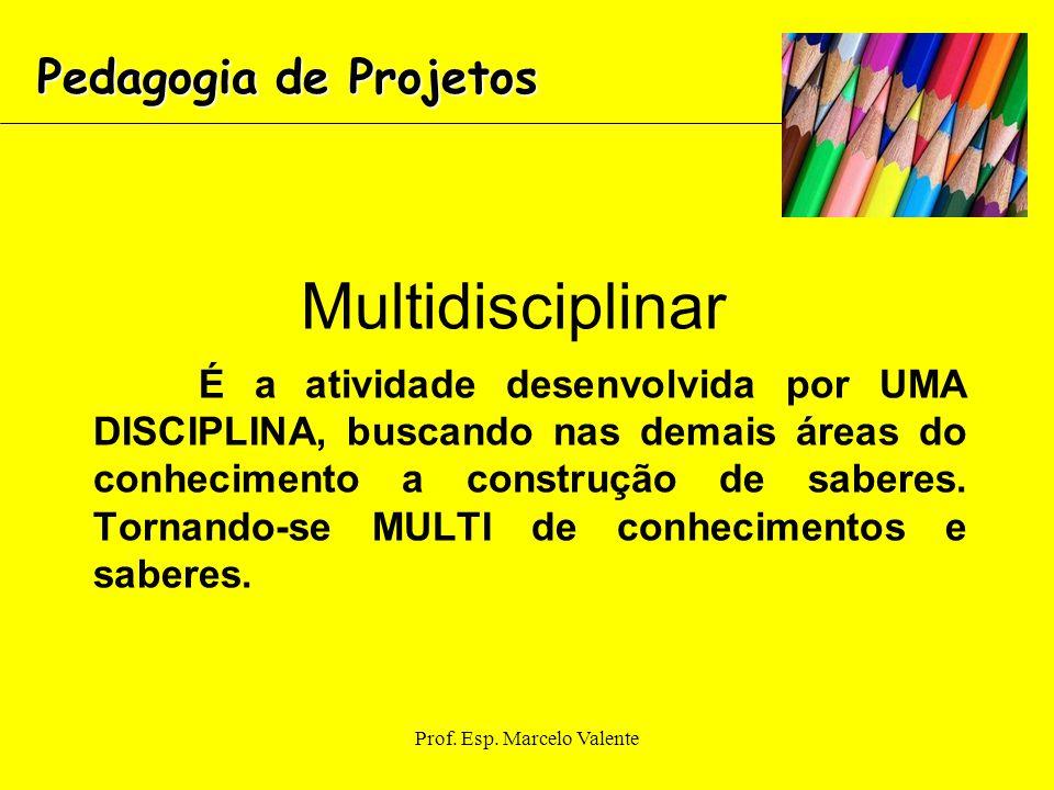 Prof. Esp. Marcelo Valente Multidisciplinar É a atividade desenvolvida por UMA DISCIPLINA, buscando nas demais áreas do conhecimento a construção de s