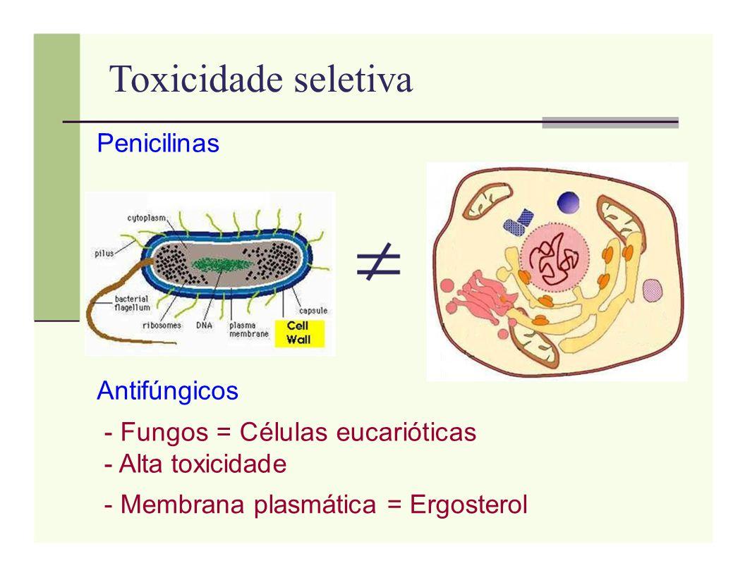 Toxicidade seletiva Penicilinas Antifúngicos - Fungos = Células eucarióticas - Alta toxicidade - Membrana plasmática = Ergosterol