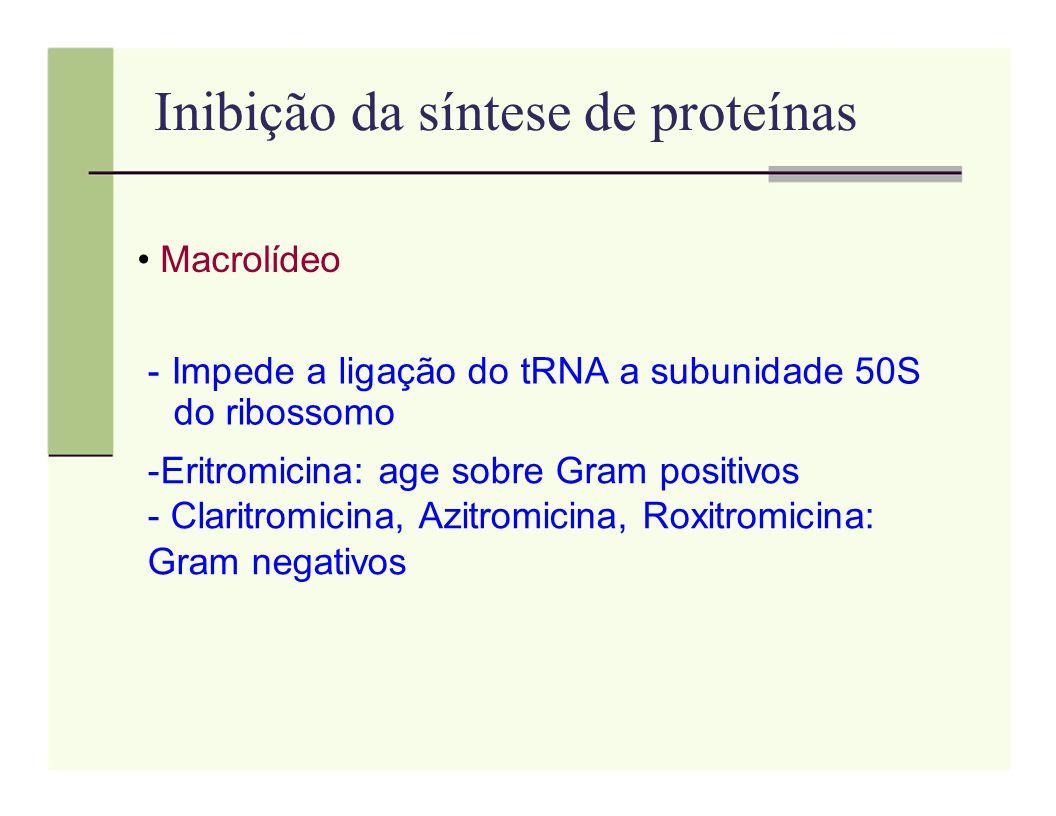 Inibição da síntese de proteínas Macrolídeo - Impede a ligação do tRNA a subunidade 50S do ribossomo -Eritromicina: age sobre Gram positivos - Claritr