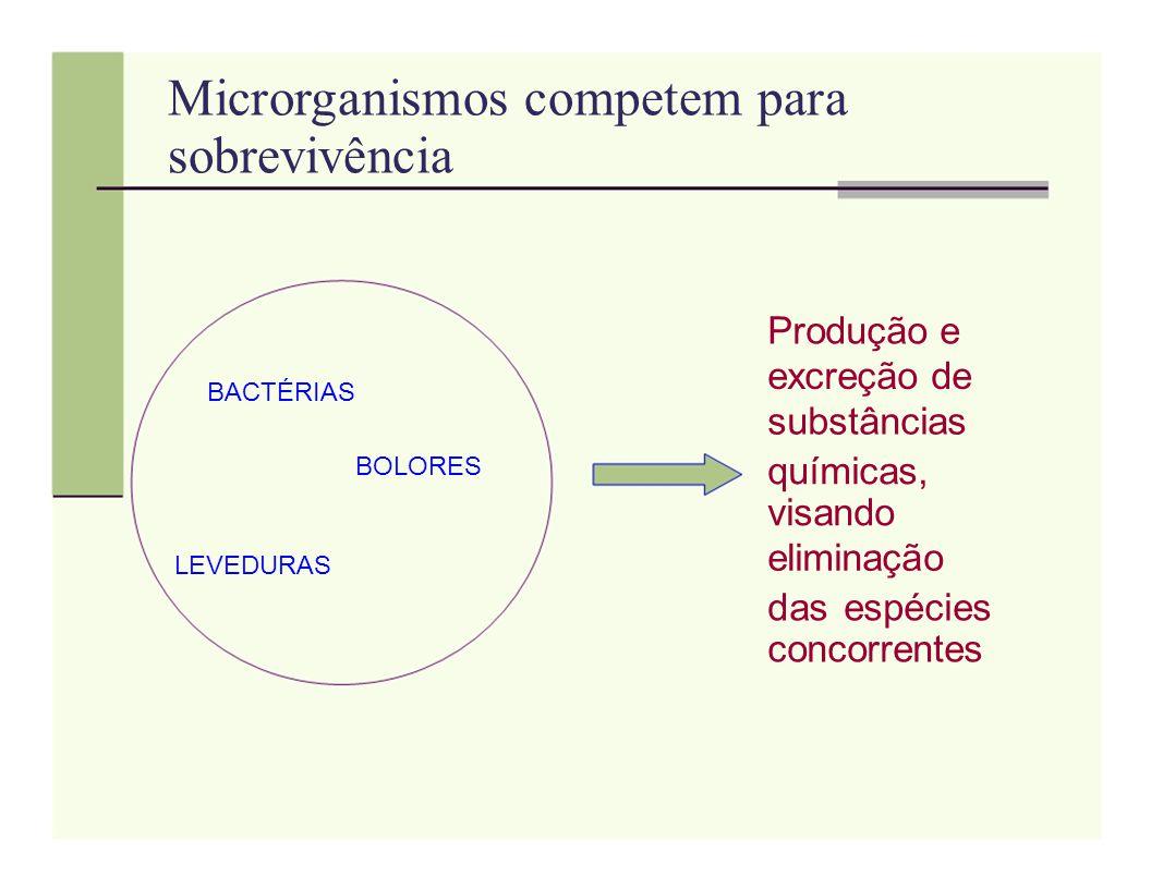 Microrganismos competem para sobrevivência Produção e excreção de BACTÉRIAS substâncias BOLORES químicas, visando LEVEDURAS eliminação das espécies co