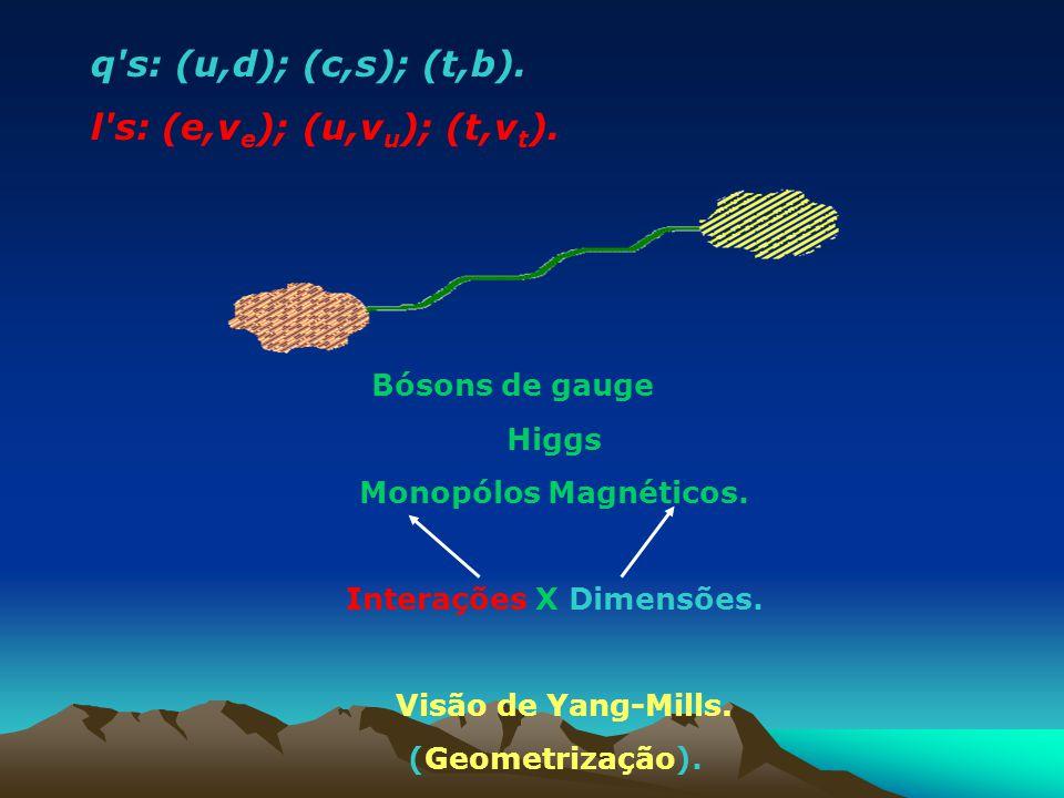 q's: (u,d); (c,s); (t,b). l's: (e,v e ); (u,v u ); (t,v t ). Bósons de gauge Higgs Monopólos Magnéticos. Interações X Dimensões. Visão de Yang-Mills.