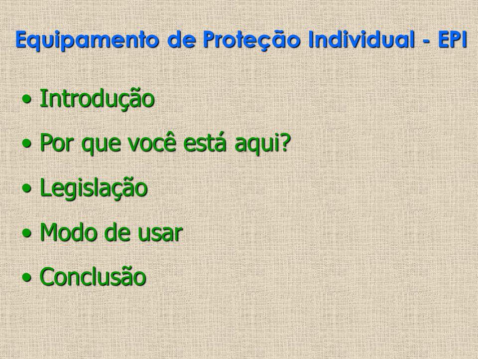 Equipamento de Proteção Individual - EPI Introdução Introdução Por que você está aqui? Por que você está aqui? Legislação Legislação Modo de usar Modo