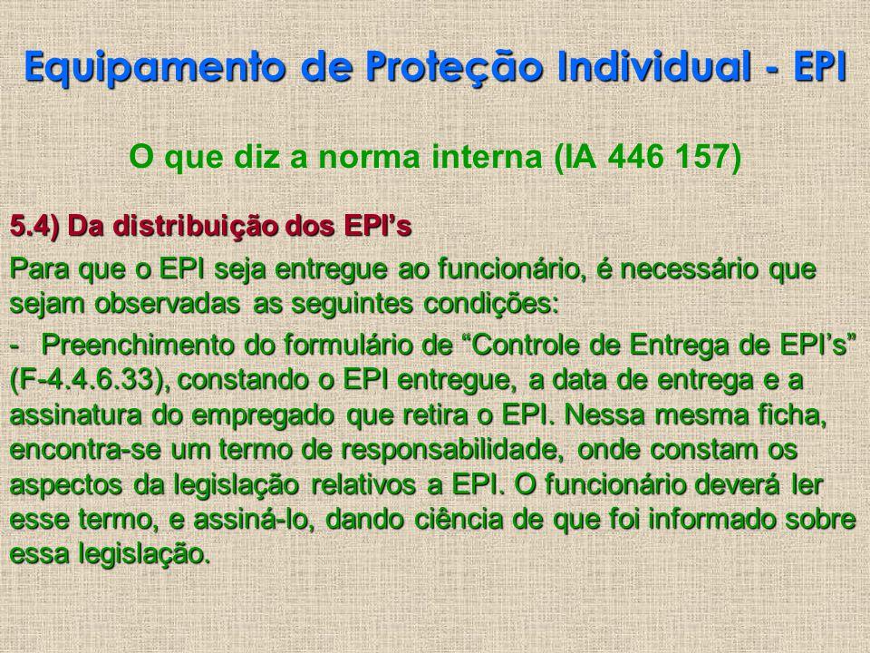 O que diz a norma interna (IA 446 157) 5.4) Da distribuição dos EPIs Para que o EPI seja entregue ao funcionário, é necessário que sejam observadas as