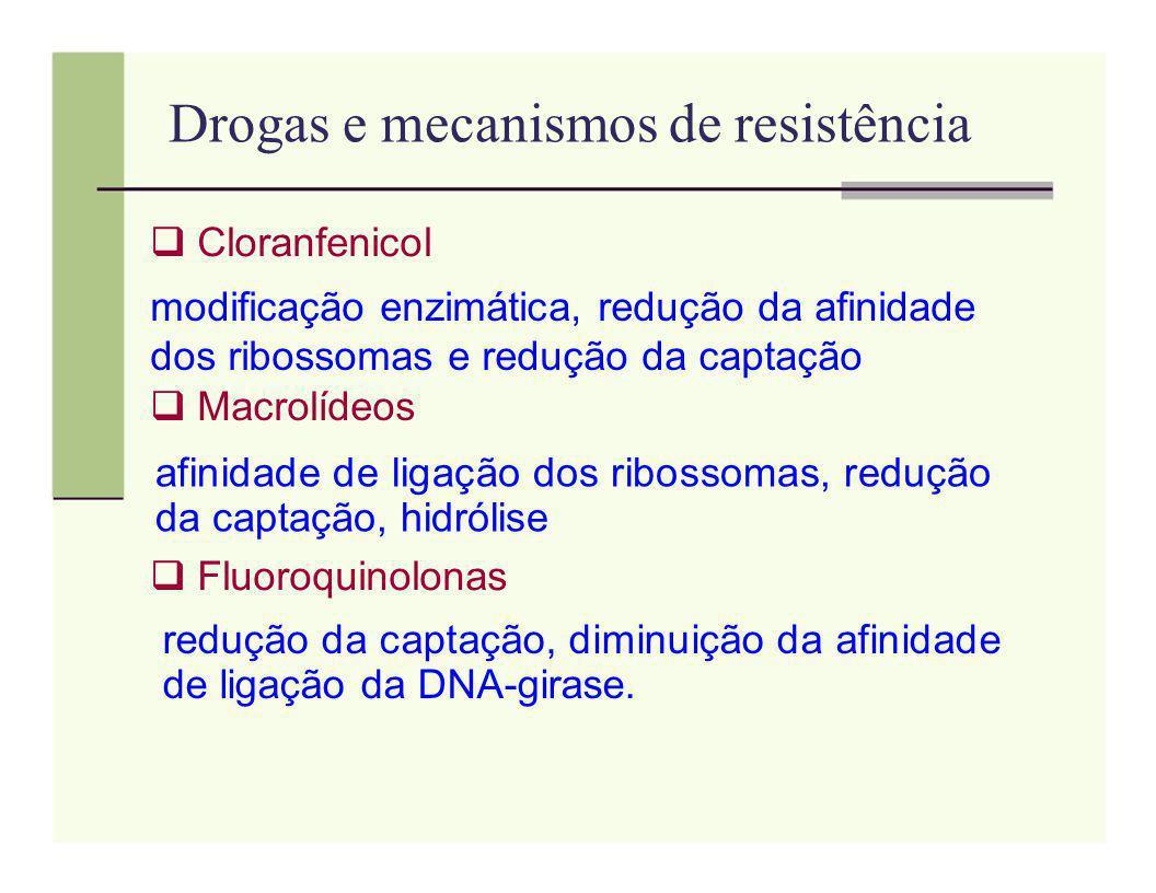 Drogas e mecanismos de resistência Cloranfenicol modificação enzimática, redução da afinidade dos ribossomas e redução da captação Macrolídeos afinida