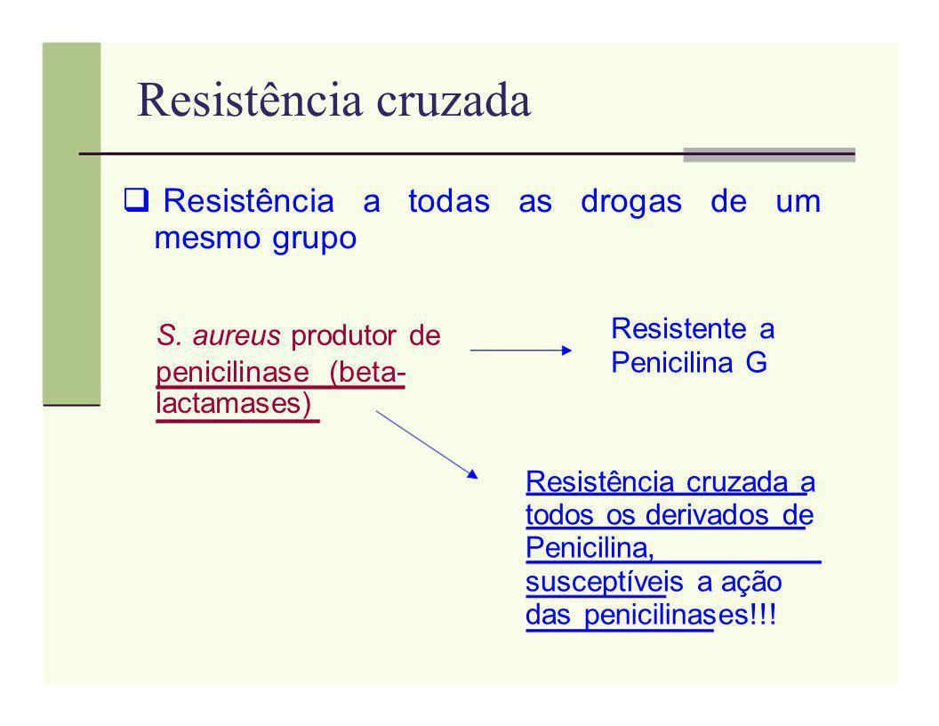 Resistência cruzada Resistência a todas as drogas de um mesmo grupo Resistente a S. aureus produtor de Penicilina G penicilinase (beta- lactamases) Re