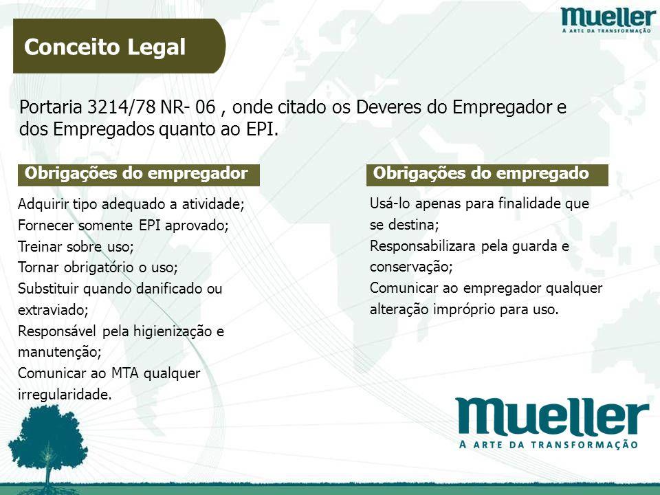 Obrigações do empregador Portaria 3214/78 NR- 06, onde citado os Deveres do Empregador e dos Empregados quanto ao EPI.