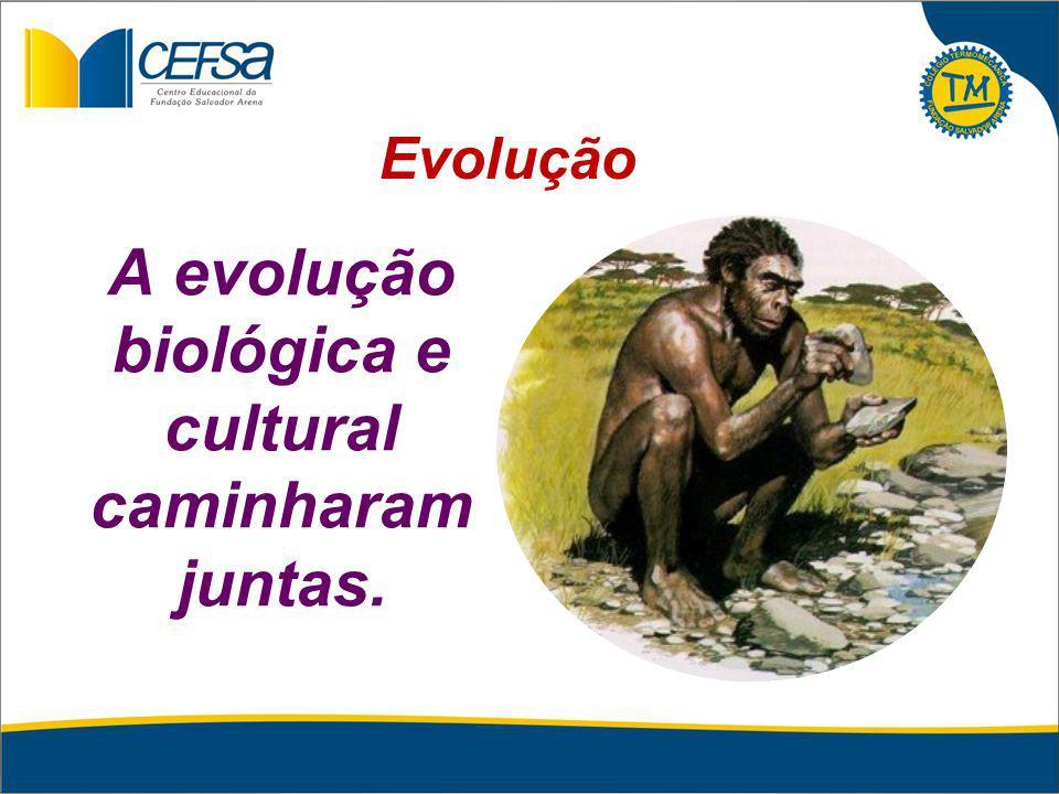 A evolução biológica e cultural caminharam juntas. Evolução
