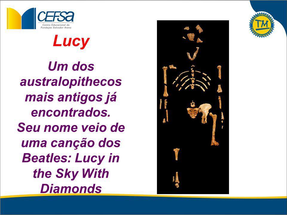 Lucy Um dos australopithecos mais antigos já encontrados. Seu nome veio de uma canção dos Beatles: Lucy in the Sky With Diamonds