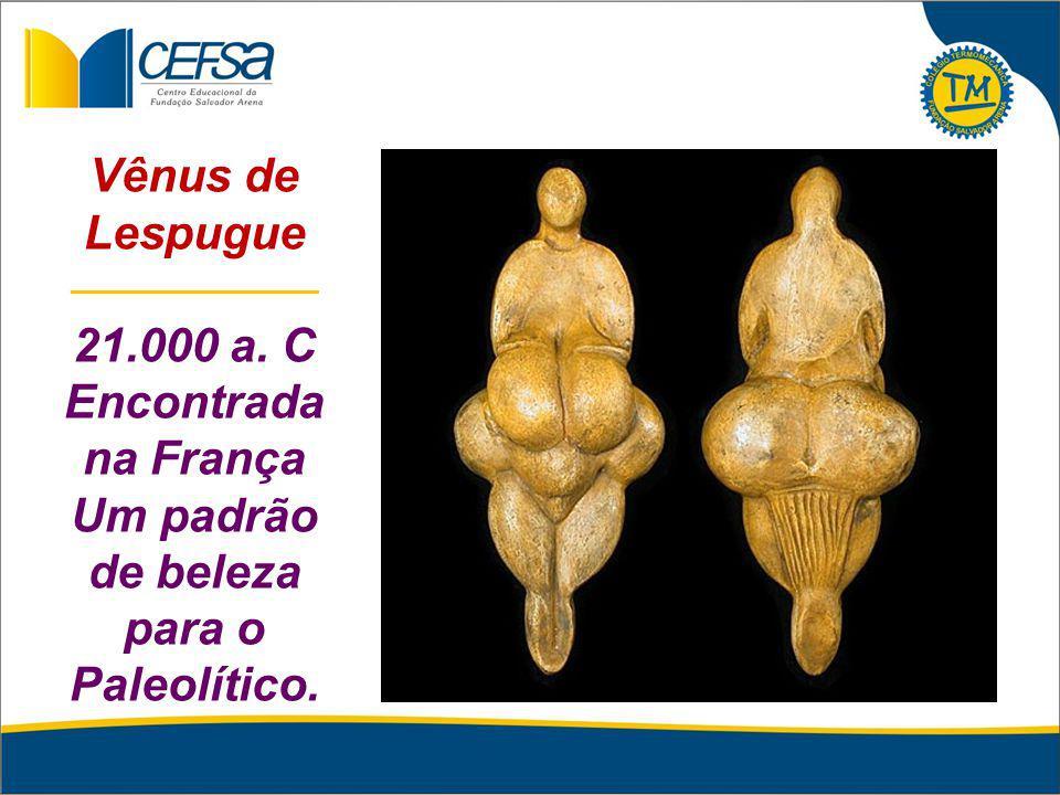 Vênus de Lespugue _______________ 21.000 a. C Encontrada na França Um padrão de beleza para o Paleolítico.