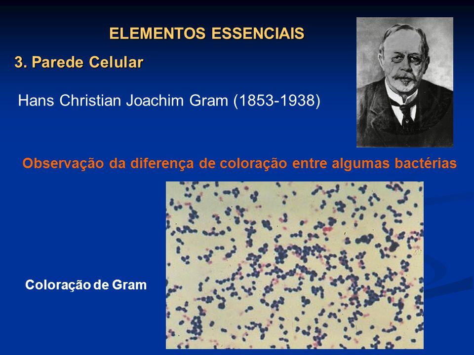 ELEMENTOS ESSENCIAIS 3. Parede Celular Hans Christian Joachim Gram (1853-1938) Observação da diferença de coloração entre algumas bactérias Coloração