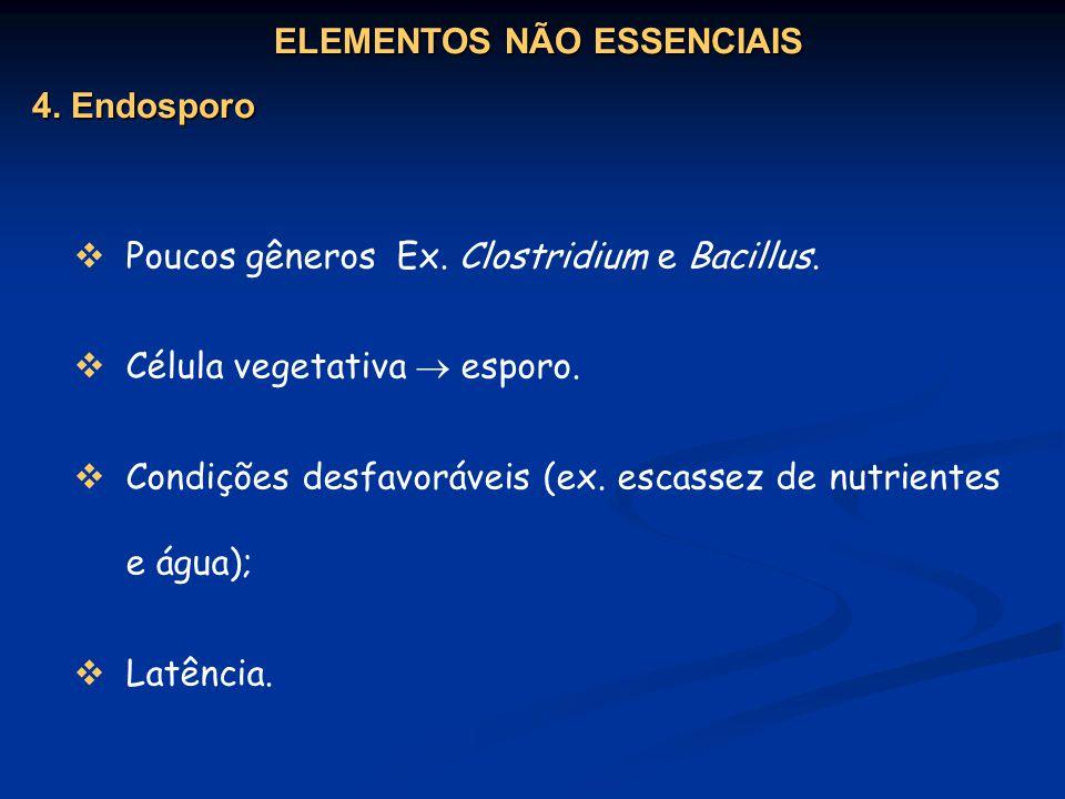 Poucos gêneros Ex. Clostridium e Bacillus. Célula vegetativa esporo. Condições desfavoráveis (ex. escassez de nutrientes e água); Latência. ELEMENTOS