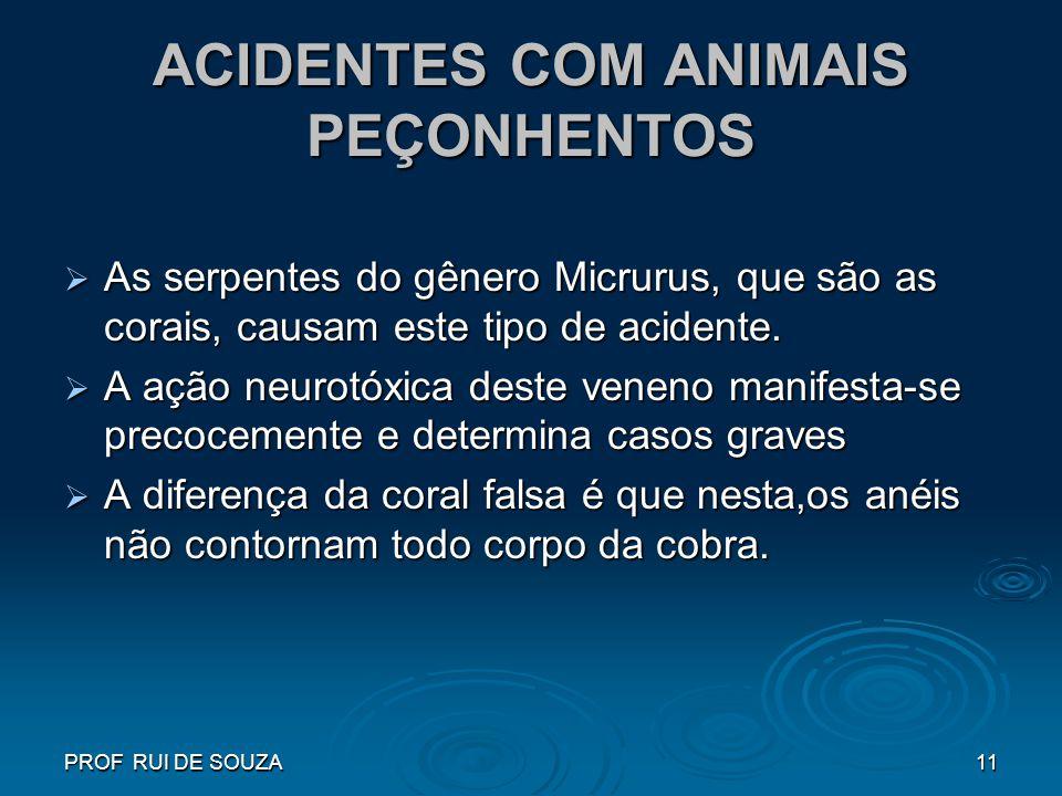 PROF RUI DE SOUZA11 ACIDENTES COM ANIMAIS PEÇONHENTOS As serpentes do gênero Micrurus, que são as corais, causam este tipo de acidente. As serpentes d